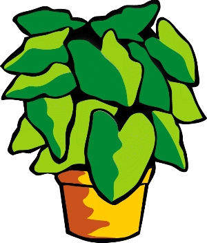 jpg_green-plant.jpg