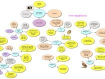 Vocabulary 4000 mind map